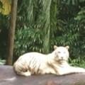 Profile picture of kasun ajith