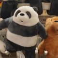 Profile picture of Panda