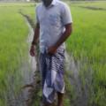 Profile picture of Nuwan Wijerathne
